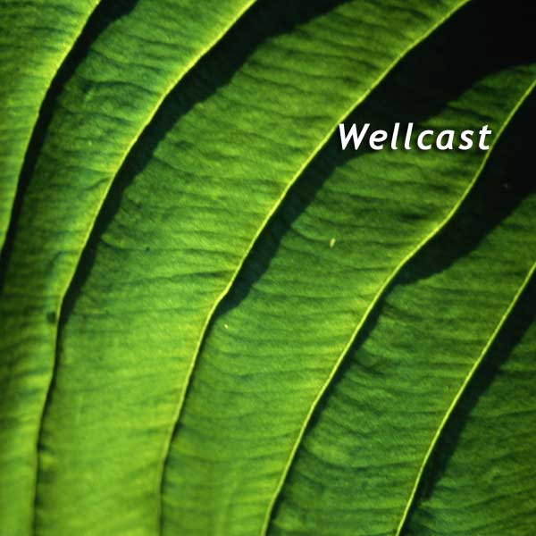 Podcast – Wellcast