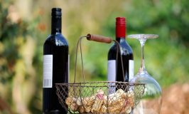 Early Indication That Resveratrol Corrects PCOS Abnormalities